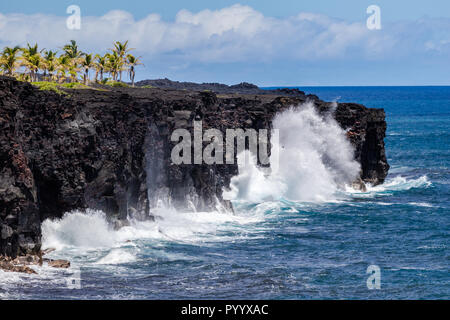 Large waves crashing against volcanic cliffs on Hawaii's Big Island. Grove of palm trees on top of coastline; Pacific ocean & clouds in background. - Stock Photo