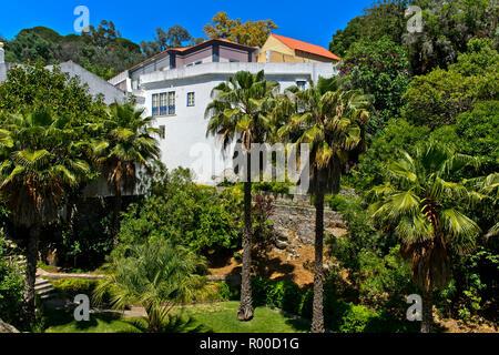 Sub-tropical garden of the thermal spa Caldas de Monchique, Monchique, Algarve, Portugal - Stock Photo