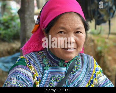 Middle-aged Vietnamese Flower H'mong hill-tribe woman wears embroidered Flower H'mong attire and looks at the camera. - Stock Photo