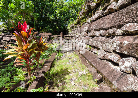 Town walls in Nan Douwas, Nan Madol: prehistoric ruined stone city built of basalt slabs. Ancient walls in the lagoon of Pohnpei, Micronesia, Oceania