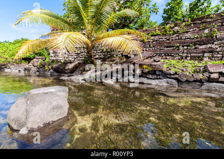 Walls and canals of Nandowas part of Nan Madol - prehistoric overgrown ruined stone city. Pohnpei, Micronesia, Oceania. 'Venice of the Pacific' - Stock Photo