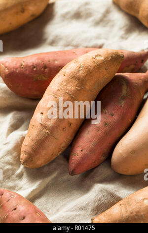 Raw Organic Assorted Sweet Potatoes Ready to Cook - Stock Photo