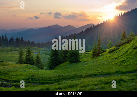 Sun setting behind spruce trees on a lush green slope. Tents and smoke in the distance. Several clouds in the orange sky at sunset. Warm summer evenin - Stock Photo