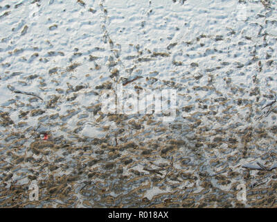 Aerial view of partially snow covered beach at Hel, Poland, in coastline of Baltic sea in winter cold day. - Stock Photo
