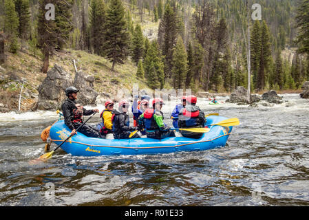 Group of people in an inflatable raft floating the Middle Fork Salmon River in Idaho with Far and Away Adventures. - Stock Photo