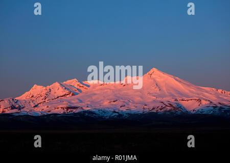 Alpenglow on Mt Ruapehu at dawn, Tongariro National Park, Central Plateau, North Island, New Zealand - Stock Photo