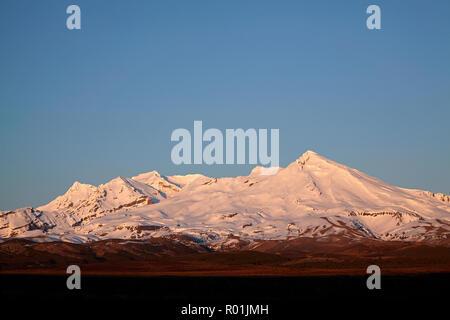 Early light on Mt Ruapehu, Tongariro National Park, Central Plateau, North Island, New Zealand - Stock Photo