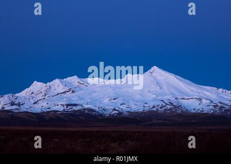 Mt Ruapehu at dawn, Tongariro National Park, Central Plateau, North Island, New Zealand - Stock Photo