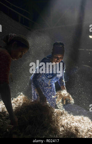 Narayanganj, Bangladesh. 1st Nov, 2018. Sun rays enter through the rooftop while Jute mill workers sorting out small pieces of jutes.Bangladesh used to be known for it's Jute. In recent years Bangladesh and many other country considering jute as the new possibilities to replace many daily goods and make bags out of jute to replace plastics. Credit: Ziaul Haque Oisharjh/SOPA Images/ZUMA Wire/Alamy Live News - Stock Photo