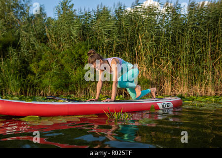 Photo of young woman doing hand stand on stand up paddle board. She wearing a leggings and top. - Stock Photo