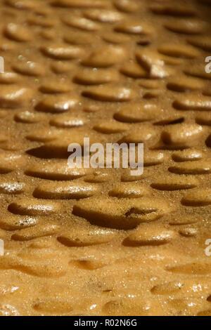 cleaning equipment sponge for kitchen or bathroom or school, porous sponge surface background, extreme macro of big porous dry sponge bizarre look - Stock Photo
