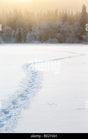 Winter landscape with trails in the snow - Stock Photo