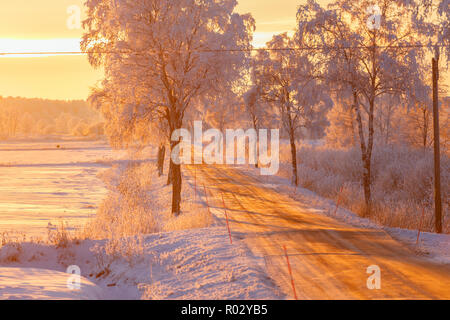 Sunset light in a winter landscape with a country road - Stock Photo