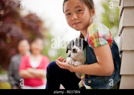 Portrait of a young girl holding a puppy. - Stock Photo