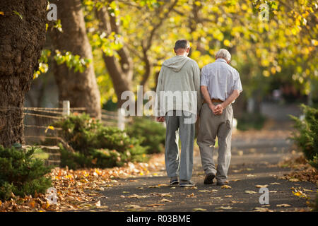Two senior men having a discussion while walking side by side through a park. - Stock Photo
