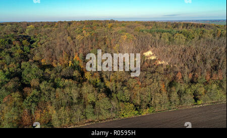 Reitwein, Germany. 31st Oct, 2018. The Reitweiner Sporn (aerial photograph with a drone). The Reitweiner Sporn is also known as Reitweiner Nase and is a distinctive wooded mountain range that extends far into the Oderbruch. Credit: Patrick Pleul/dpa-Zentralbild/ZB/dpa/Alamy Live News - Stock Photo