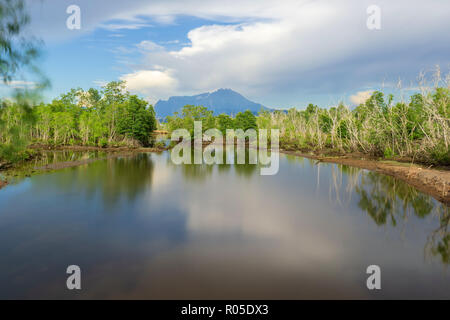 landscape scenic view of lake mangrove wetland in Sabah Borneo with Mount Kinabalu at far background. - Stock Photo