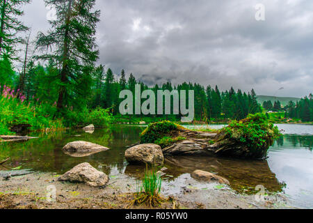 Lake San Pellegrino in summer, surrounded by nature - Stock Photo