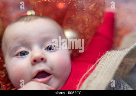 Small baby boy with pretty face wearing red pajamas lying on holiday decorations shot in closeup from above while looking at camera - Stock Photo