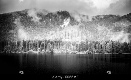Dramatic mountain landscape pin black and white. Lake and foggy weather over the lake, pine tree forest, tranquil nature scene. Nature landscape - Stock Photo