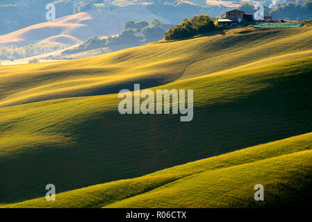 Tuscan Hills, Asciano, Tuscany, Italy, Europe - Stock Photo