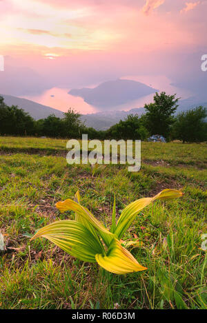 Montisola view from Colmi of Sulzano, Brescia province, Lombardy district, Italy, Europe - Stock Photo