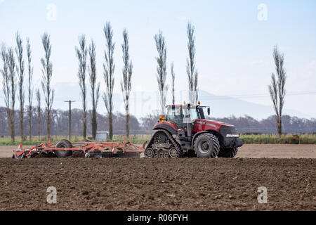 Temuka, Canterbury, New Zealand: September 14 2018: A farmer prepares his field for seeding using a Case tractor and plough - Stock Photo