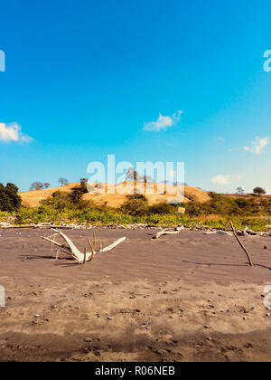 clear blue sky above sand hills with trees behind beach on sunny day - Stock Photo