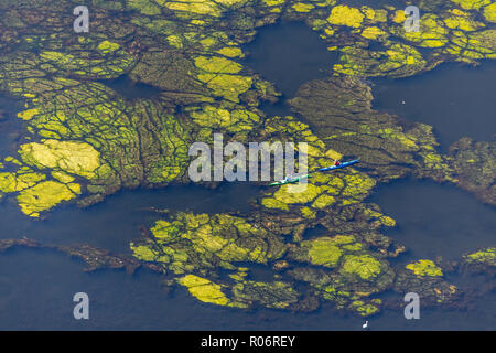 Aerial view, canoeists on the Hartkortsee near the former marina Hartkortsee, Hagen, Ruhr area, North Rhine-Westphalia, Germany, Europe, weather (Ruhr - Stock Photo