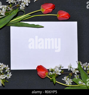 Frame of white and red tulips flowers around a sheet of paper on a black background. - Stock Photo