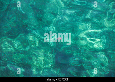 Big pink jellyfish in sea water as a beautiful abstract background flat lay - Stock Photo