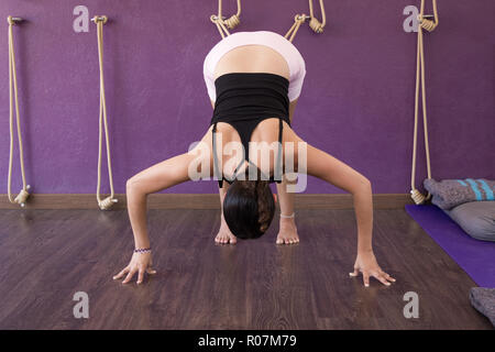 Yoga teacher practicing Adho Mukha Svanasana on stretching ropes. Female yogi in downward facing dog pose on purple studio - Stock Photo