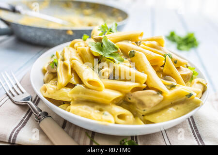 Pasta pene with chicken pieces mushrooms parmesan cheese sauce and herb decoration. Pene con pollo - Italian or medierranean cuisine. - Stock Photo