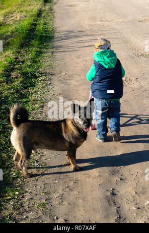little boy goes with toy stoller on the road, for him goes dog selective focus - Stock Photo
