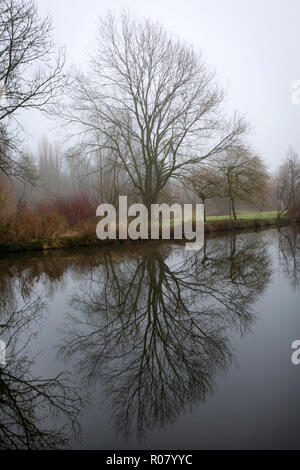 Trees reflected in still water on the Grand Union Canal early morning at Hunton Bridge, near Leavesden, Hertfordshire, England - Stock Photo