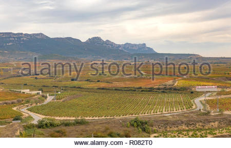 Landscape view of vineyards from the Castle of San Vicente de la Sonsierra in La Rioja, Spain - Stock Photo