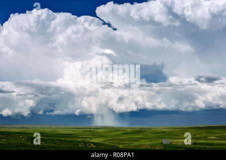 Cumulonimbus thunderstorm clouds over a green, grass landscape near Newcastle, Wyoming, USA. - Stock Photo
