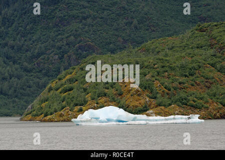 Small iceberg in Mendenhall Lake, Alaska, photographed from the Visitor Center on an overcast summer day. - Stock Photo