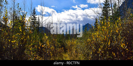 amazing scene in the Rockies as a storm rushes in - Stock Photo