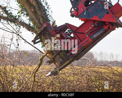 Claw of a tree cutting crane in action Stock Photo