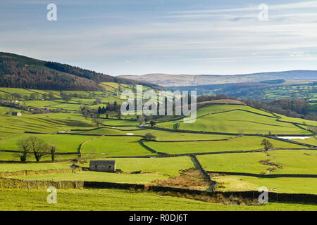 Under blue sky, long-distance picturesque view to Wharfedale (isolated barns & rolling green pasture in sunlit valley) - Yorkshire Dales, England, UK. - Stock Photo