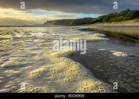 Foam on Surf on Temperate Climate Beach at Pakiri Coast, New Zealand - Stock Photo