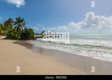 Le Gosier, Guadeloupe - December 20, 2016: Paradise tropical beach and palm trees, the Gosier in Guadeloupe island, Caribbean. Travel, Tourism and Vac - Stock Photo