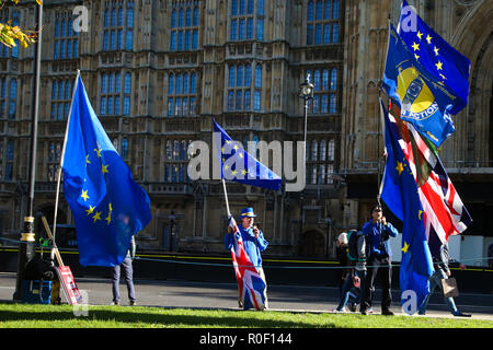 London, UK. 29th Oct, 2018. Protesters are seen holding flags during the protest held outside the Palace of Westminster, London. Credit: Dinendra Haria/SOPA Images/ZUMA Wire/Alamy Live News - Stock Photo