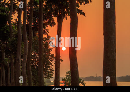 Hazy Sunset through treeline. Sun lighting in the evening. Golden hour view of rural india city. Nature landscape photography. - Stock Photo