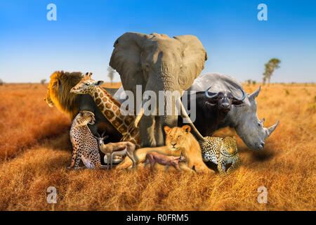Big Five and wild african animals composition on savannah nature bokeh background. Serengeti wildlife area in Tanzania, Africa. African safari scene landscape. Wallpaper background. Blue sky. - Stock Photo