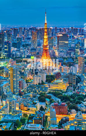 Tokyo skyline with Tokyo Tower at night - Stock Photo