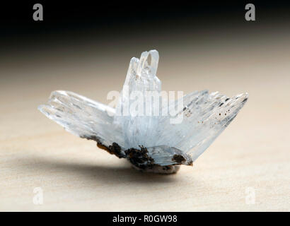 Barite on Calcite, Stoneham, weld County, Colorado gem - Stock Photo
