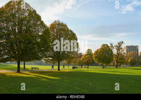 Clissold Park, Stoke Newington, Hackney, London, on a mild sunny afternoon in November 2018 - Stock Photo