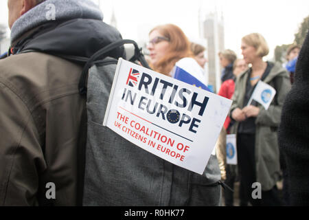 London, UK. 5th Nov, 2018. Protesters form a human chain outside Downing Street demanding rights for EU nationals and whether they will be allowed to stay in the United Kingdom after Brexit Credit: amer ghazzal/Alamy Live News Credit: amer ghazzal/Alamy Live News - Stock Photo
